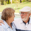 Happy Senior Couple in The Park — Stock Photo #16741839