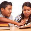 Hispanic Brother and Sister Having Fun Studying — Stock Photo #16745633