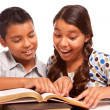 Hispanic Brother and Sister Having Fun Studying — Stock Photo #16745883