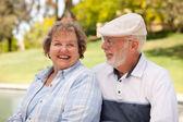 Happy Senior Couple in The Park — Stock Photo