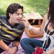 Attractive Hispanic Couple Having a Picnic in the Park — Stock Photo #16752063