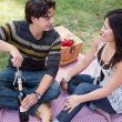 Attractive Hispanic Couple Having a Picnic in the Park — Stock Photo