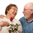 Happy Senior Husband Giving Red Rose to Wife - Стоковая фотография