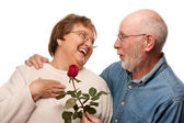 Happy Senior Husband Giving Red Rose to Wife — Stock Photo