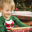 Stock Photo: Young Boy Enjoying Christmas Morning Near The Tree