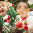 Mixed Race Baby and Young Boy Enjoying Christmas Morning Near Th — Stock Photo