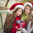 Stockfoto: Two Smiling Women Santa Hats Holding a Wrapped Gift