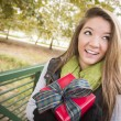 Pretty Woman with Wrapped Gift with Bow Outside - Stock Photo