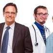 Friendly Male and Female Doctors with Businessman on White — Stock fotografie