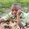 Stock Photo: Young African American Boy Playing in the Park
