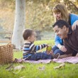 Happy Mixed Race Ethnic Family Having Picnic In The Park — Stock Photo
