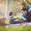 Happy Mixed Race Ethnic Family Having Picnic In The Park — Stock Photo #19311343