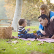 Happy Mixed Race Ethnic Family Having Picnic In The Park — Stock Photo #19311351