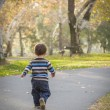 Young Baby Boy Walking in the Park — Stock Photo