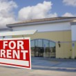 Vacant Retail Building with For Rent Real Estate Sign — Stock Photo #21263455