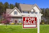 出售房地产标志和房子的家 — 图库照片