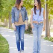 Young Adult Mixed Race Twin Sisters Walking Together - Stock Photo