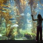 junges Mädchen Aufstehen gegen große Beobachtung Aquarienscheibe — Stockfoto