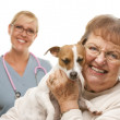 Happy Senior Woman with Dog and Veterinarian — Stock Photo #28005597