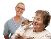 Happy Senior Woman with Dog and Veterinarian — Stock Photo