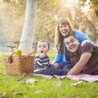 Happy Mixed Race Ethnic Family Having a Picnic In Park — Stock Photo #28598541