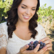 Young Adult Woman Enjoying The Wine Grapes in The Vineyard — Stock Photo