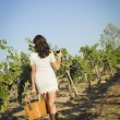 Young Woman Enjoying A Walk and Wine in Vineyard — Stock Photo #29862847