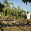 Stock Photo: Young Woman Enjoying A Walk and Wine in Vineyard