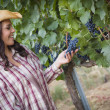 Young Adult Female Farmer Inspecting Grapes in Vineyard — Stock Photo