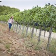 Young Female Farmer Inspecting the Grapes in Vineyard — Stock Photo #29863061