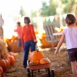 Stock Photo: Cute Little Girls Pulling Their Pumpkins In Wagon