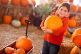 Cute Girl Choosing A Pumpkin — Stock Photo