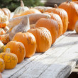 fresh orange pumpkins and hay in rustic fall settin — Stock Photo
