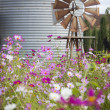 Antique Farm Windmill and Silo in a Flower Field — Stock Photo