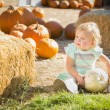 Adorable Baby Girl Holding a Pumpkin at the Pumpkin Patc — Stock Photo #33544067