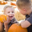 Two Boys at the Pumpkin Patch Talking and Having Fu — Stock Photo