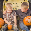 Two Boys Holding Pumpkins Talking and Sitting Against Tractor Ti — Stock Photo #33670627