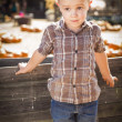 Little Boy Standing Against Old Wood Wagon at Pumpkin Patc — Stock Photo