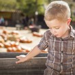 Sad Boy at Pumpkin Patch Farm Standing Against Wood Wago — Stock Photo