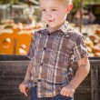 Stock Photo: Little Boy With Hands in His Pockets at Pumpkin Patc
