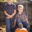 Two Boys at the Pumpkin Patch Against Antique Wood Wagon — Stock Photo