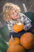 Oturma ve onun kabak balkabağı patc tutan küçük çocuk — Stok fotoğraf
