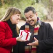 Stock Photo: Mixed Race Couple Sharing Christmas or Valentines Day Gift Outsi