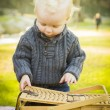 Blonde Baby Boy Opening Picnic Basket Outdoors at the Park — Stock Photo #37557899