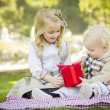 Little Girl Gives Her Baby Brother A Gift at Park — Foto Stock #37558019