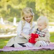 Little Girl Gives Her Baby Brother A Gift at Park — Stok fotoğraf
