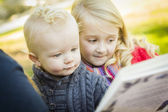 Mother Reading a Book to Her Two Adorable Blonde Children Out At The Park — Stock Photo