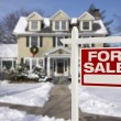 Home For Sale Sign in Front of Snowy New House — Stock Photo #37722515