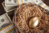 Golden Egg in Nest and Thousands of Dollars Surrounding — Stock Photo