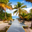 The tropical beach of Varadero in Cuba — Stock Photo #14868807